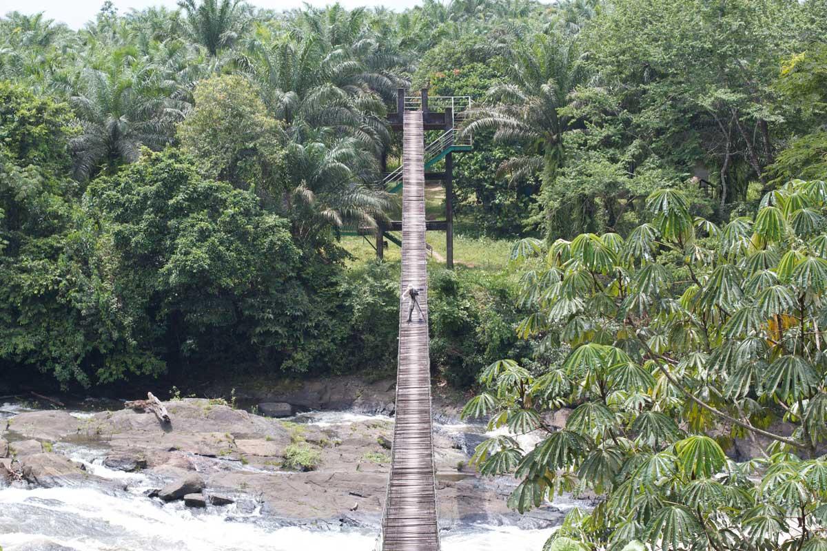 Cameraman @ Korup Bridge