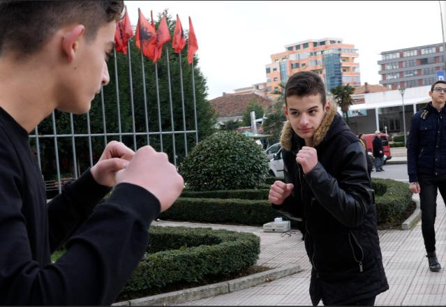 Gewalttägige Männer, Aktion gegen Gewalt, Albanien
